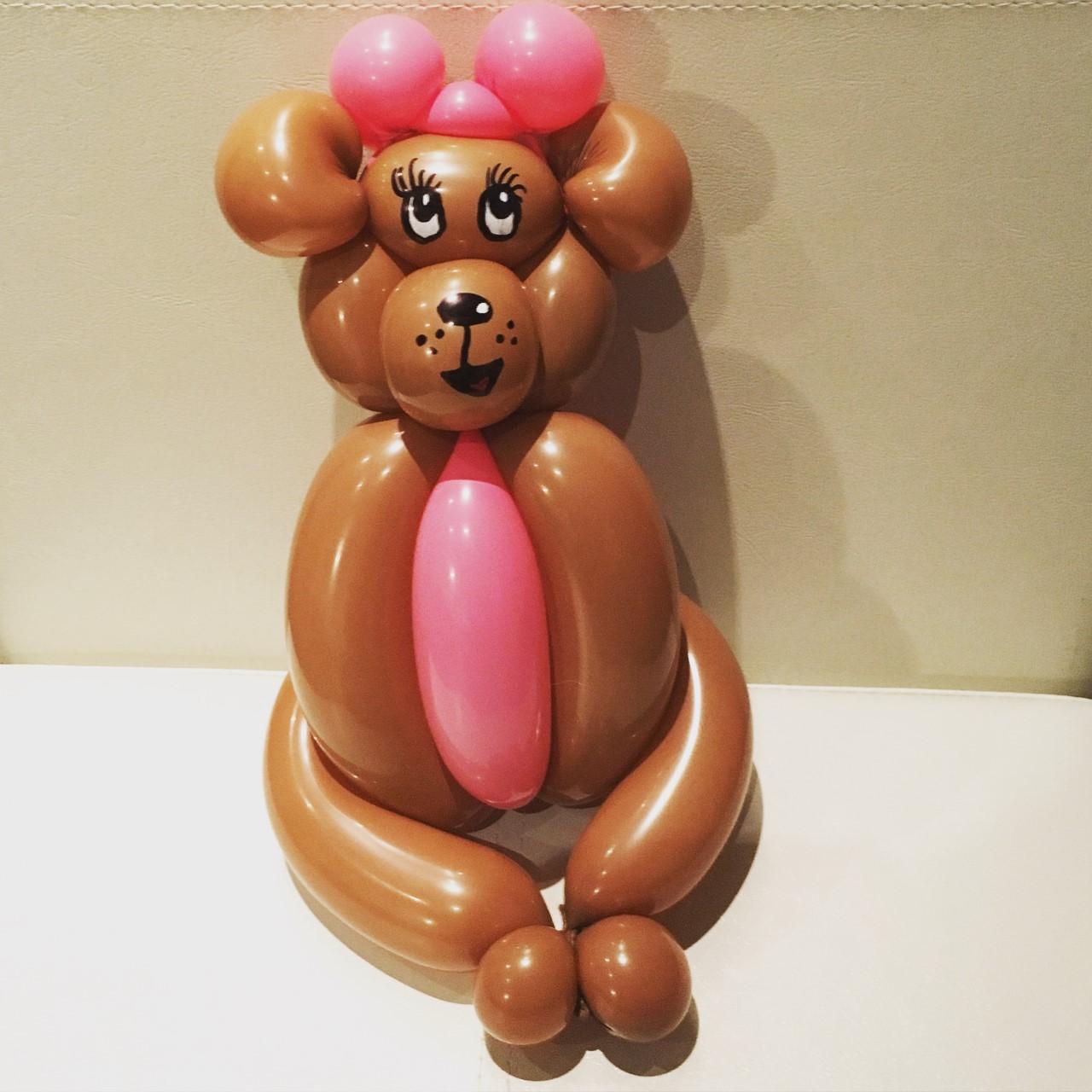 Cute bear balloon animal
