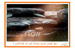Flash- Flow .jpg