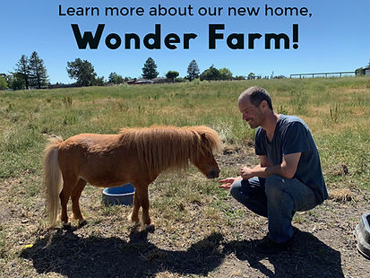 Learn More About Wonder Farm
