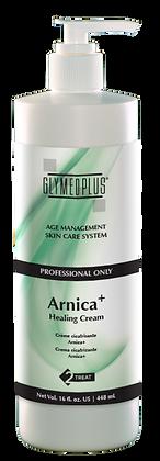 Arnica+ Healing Cream Back Bar Size