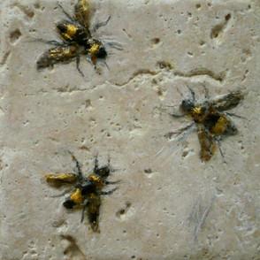 Bees 3.jpg