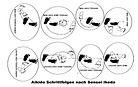 Didaktický systém podľa Ikeda sensei