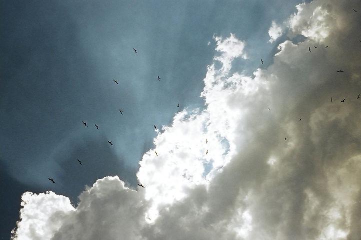 200515013.jpg