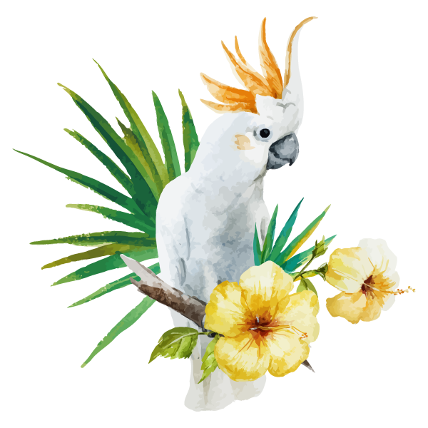 Bianco Parrot