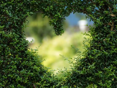 Self Love that Heals the Heart