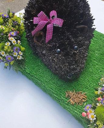 Hedgehog Tribute