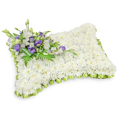 Based Pillow  072