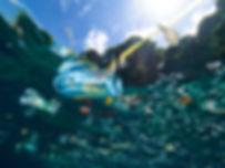 Plastic Pollution Picture.jpg