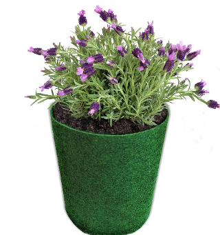 Fabric Grow Bags – A better alternative to pots?