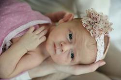 Shruttigarg_newborn photography-20