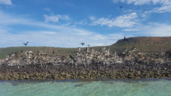 isla-san-gabriel-4.jpg