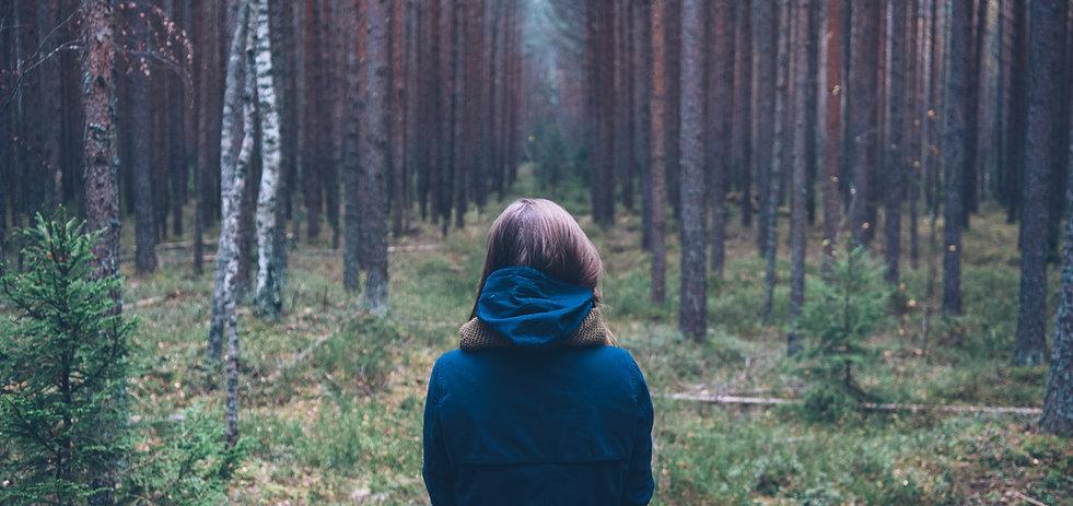Bestattungen Wald