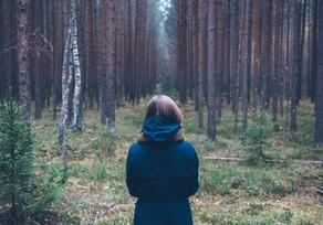 Walking the path of gender-based violence