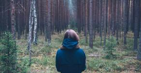 Ecopsychologie in de praktijk