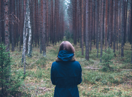 How To Make The Most Out Of Self-Isolation