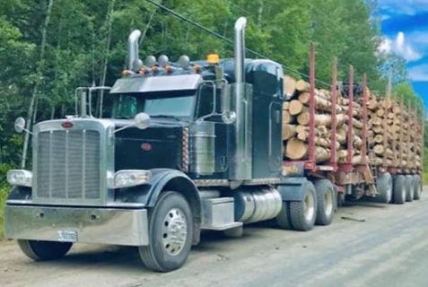 2020-05-21 09_02_38-Camion a vendre Pete