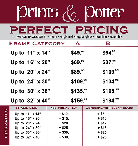perfect%20Pricing_chart_edited.png
