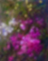 fullsizeoutput_577c.jpg