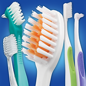 Picture of toothbrushes Dental Hygiene at White Orchid Dental in northwest Indiana