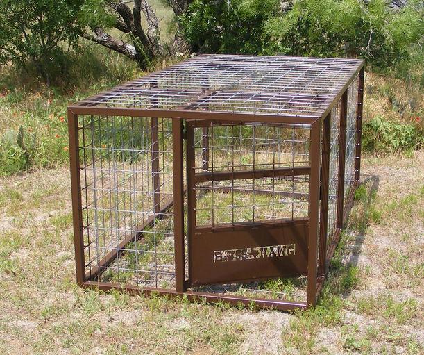 jbsofacadiana | wild-hog-traps | Wix.com