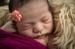 Newborn Fotoshooting Fotografin Mia