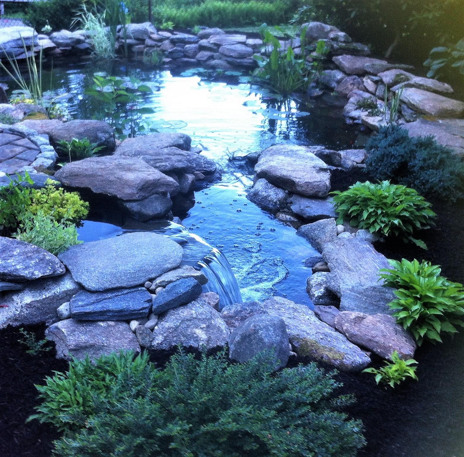 Decker Pond 1