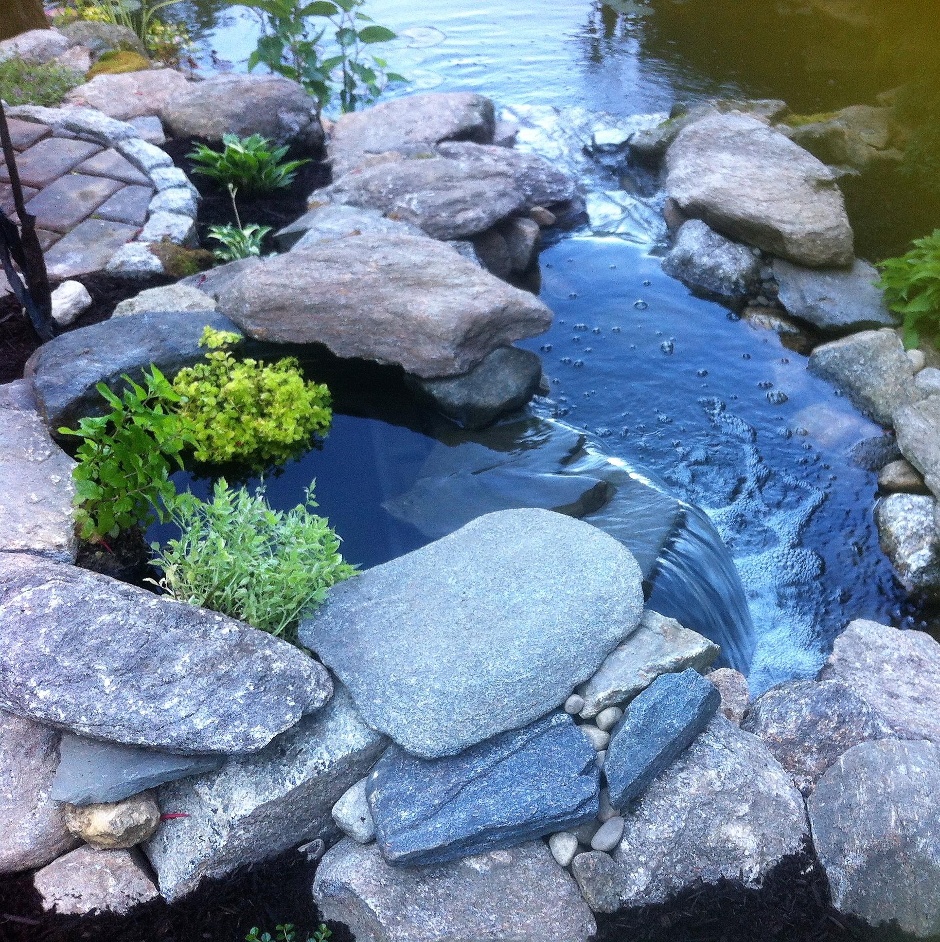 Decker Pond 2
