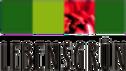 logo_lebensgruen-7944f894_edited.png