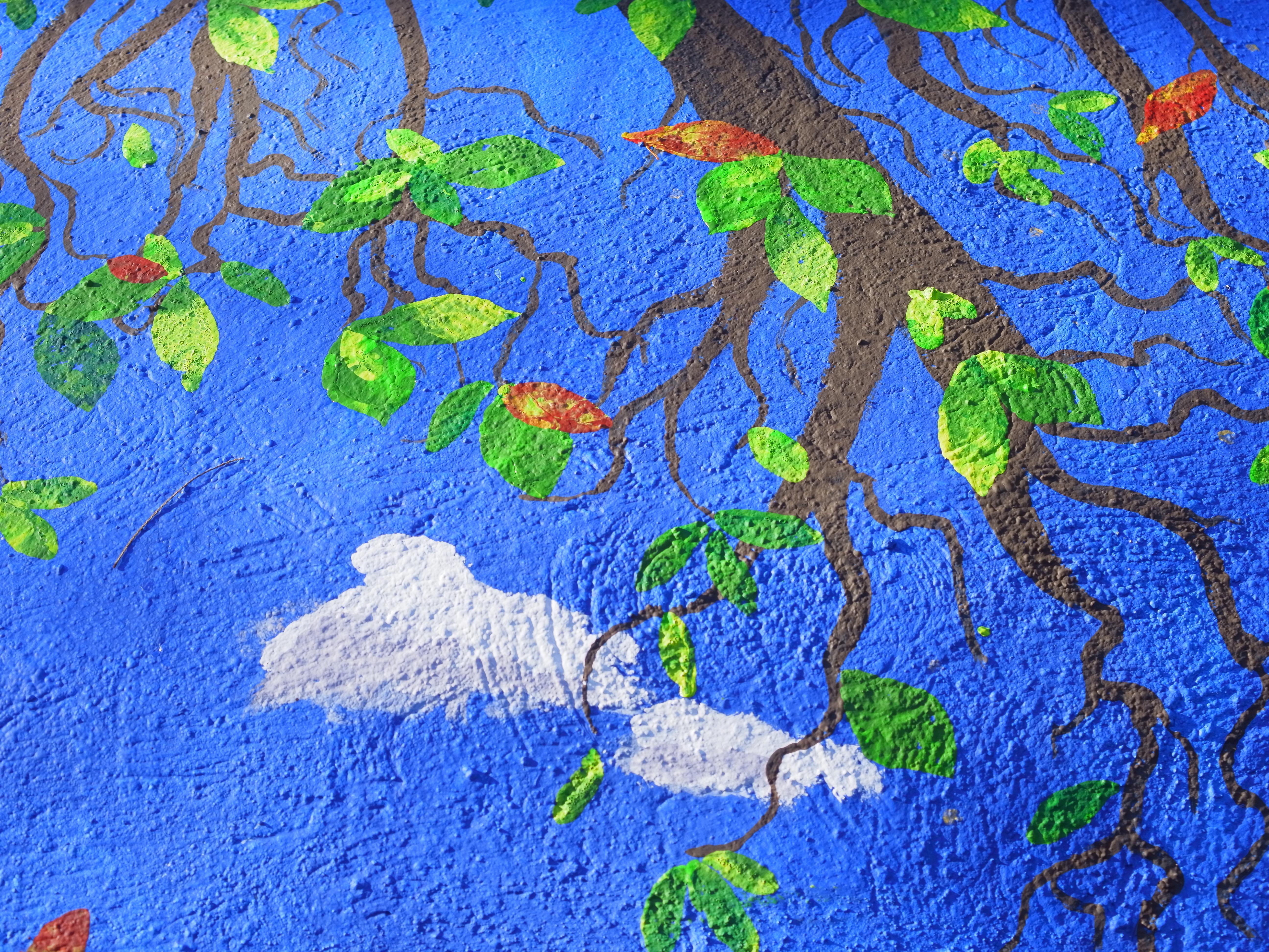 Tree shows all seasons