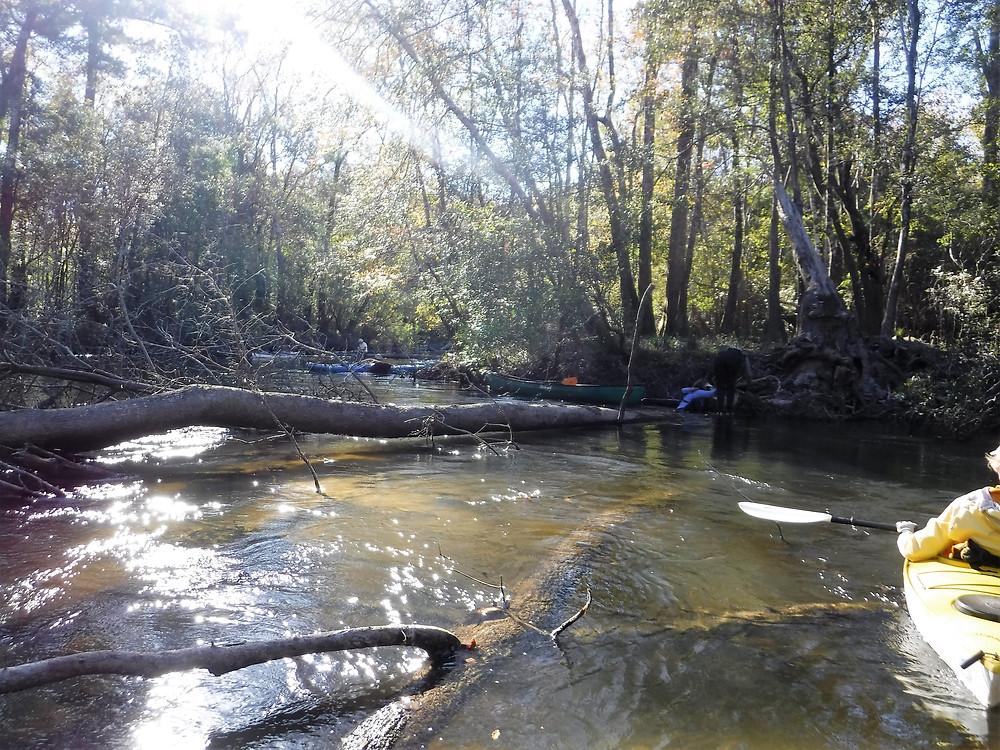 Shoal River Cutoff Pullover