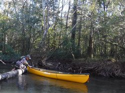 Pullover on Shoal River cutoff