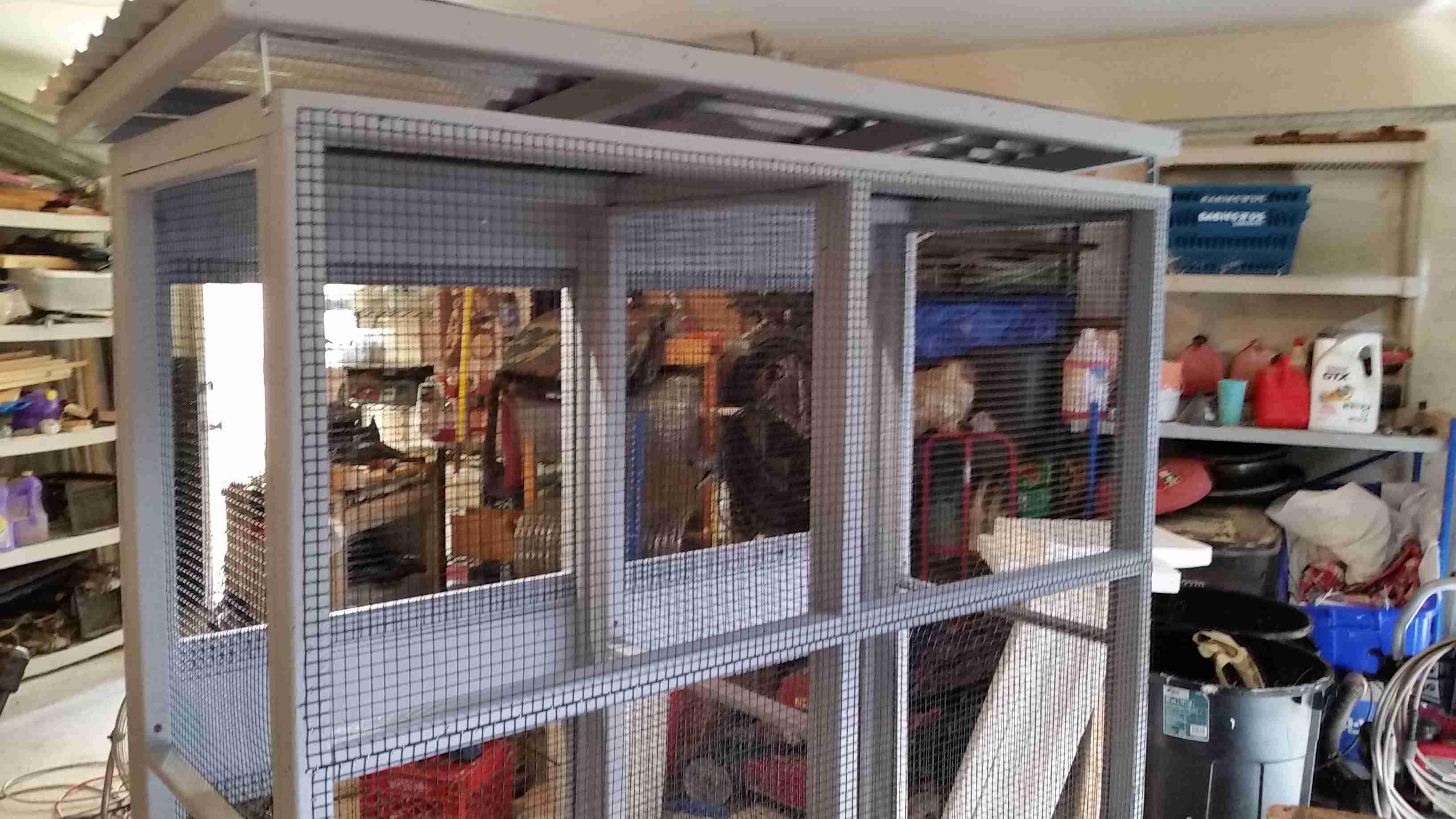Hilton head Hen House - Dove Aviary (1).