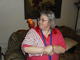 bird sitting bird boarding