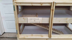 Guinea Pig - Rabbit Cage Galves 1 (2)