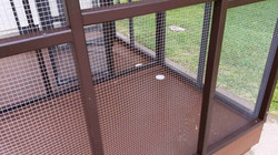 Parrot Aviary - Dual Cage (4)
