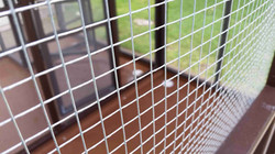 Parrot Aviary - Dual Cage (3)