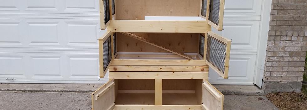 Guniea Pig Duplex (8).jpg