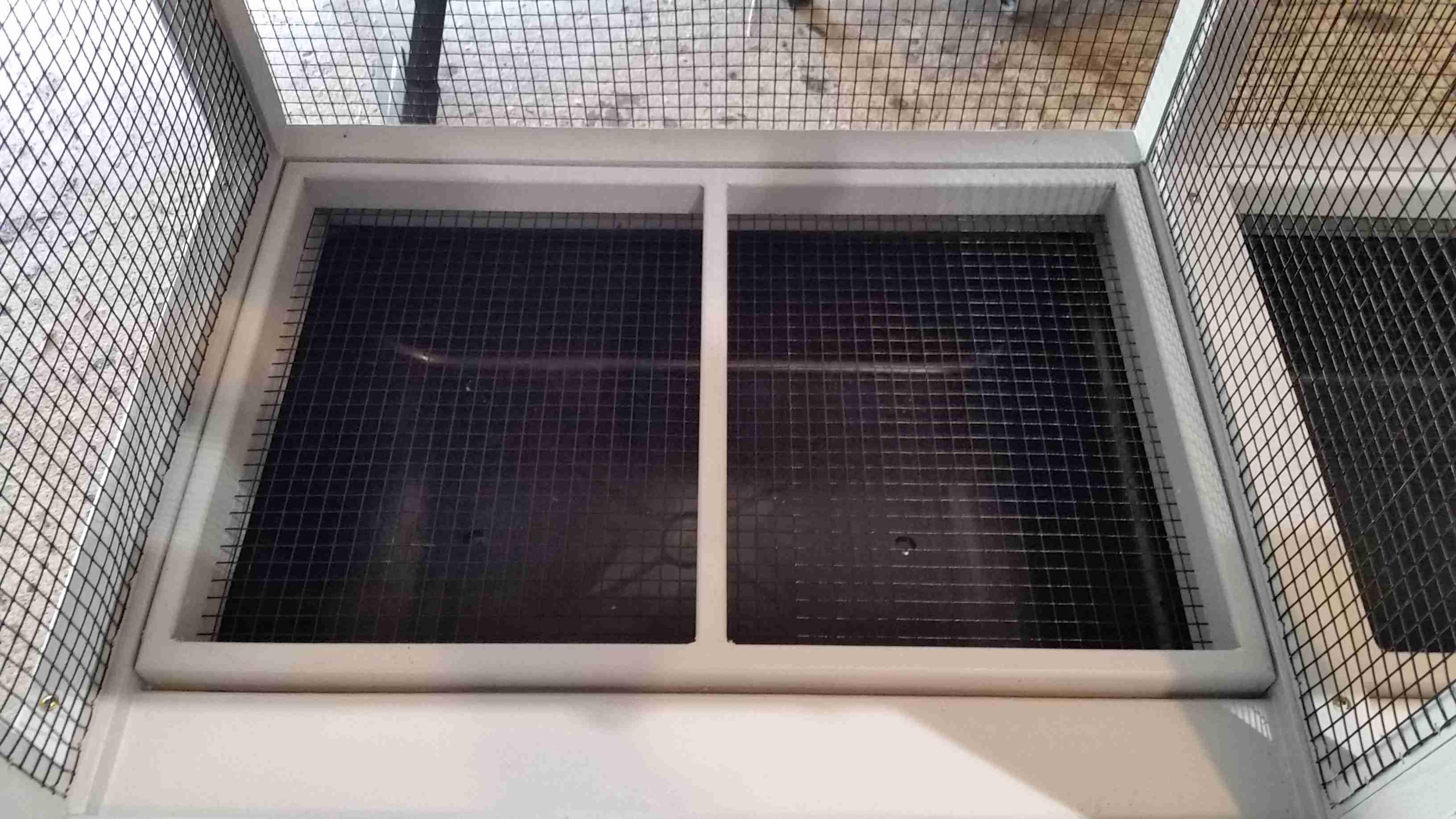 Hilton head Hen House - Dove Aviary (14)
