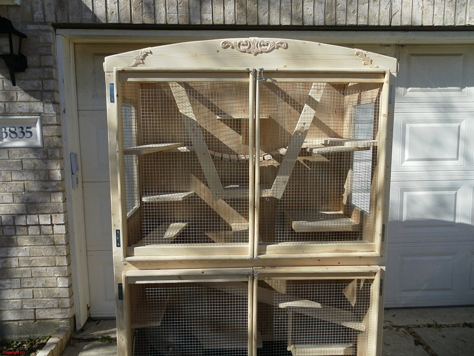 Indoor Amp Outdoor Butterfly Habitats Amp Cages