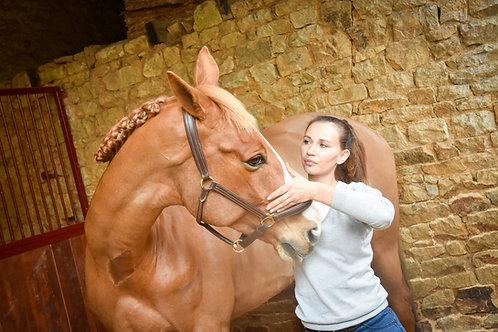 Kelly Epinat - Physiothérapeute chevaux