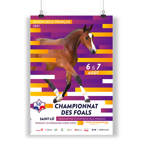 Mockup affiches_foals.png