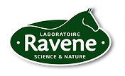 Logo_Ravene_-01.png