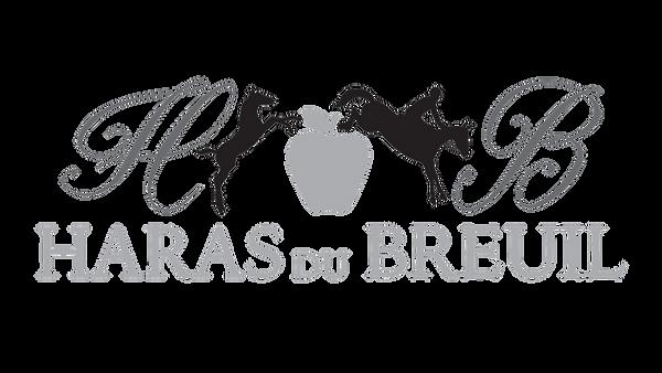 logo Haras du breuil  fd blc.png