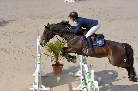 Des chevaux en forme à Lamballe !