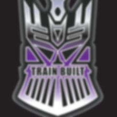 trainbuilt.jpg