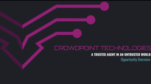 Start an e-commerce biz? See how I did with Crowdpoint Technologies!