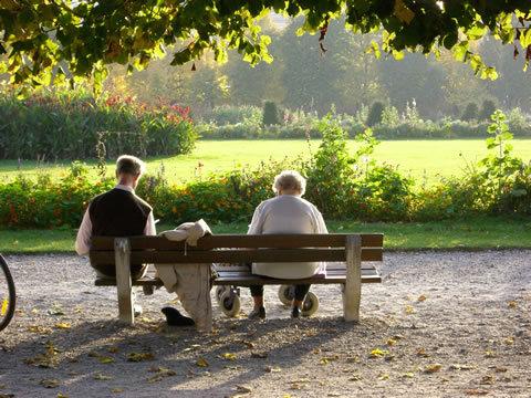 Donate a park bench