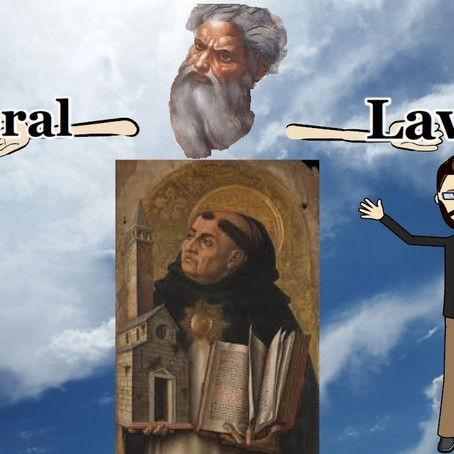 Is Natural Law Just for Humans?