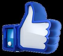 Like facebook comprimido.png