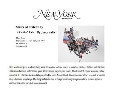 Jerry Saltz New York Magazine  .jpg